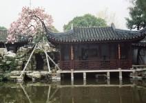 Chiny_093