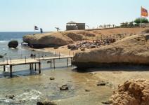 Egipt_Morze_Czerwone_058
