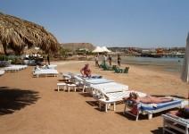 Egipt_Morze_Czerwone_069