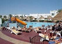 Egipt_Morze_Czerwone_091