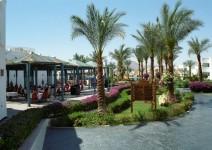 Egipt_Morze_Czerwone_092