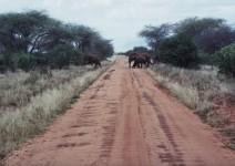 Kenia_014