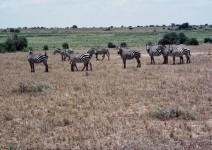 Kenia_032