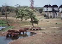 Kenia_106