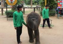Tajlandia_i_Kambodza_2013_070